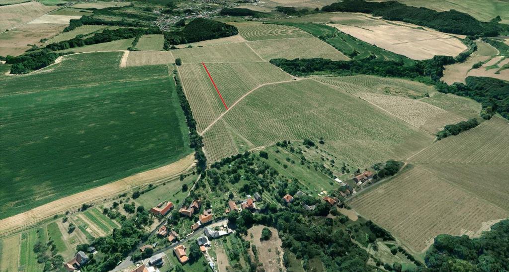 pozemek parc.č. 2768 - vinice