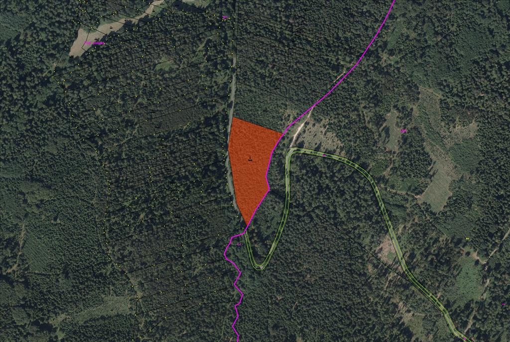 Pozemek - parcela KN 769/55 o výměře 13439 m2, lesní pozemek