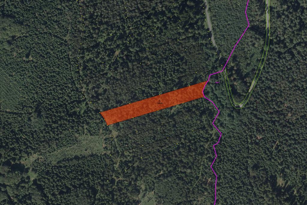Pozemek-parcela KN 1005/26 o výměře 5660 m2, lesní pozemek