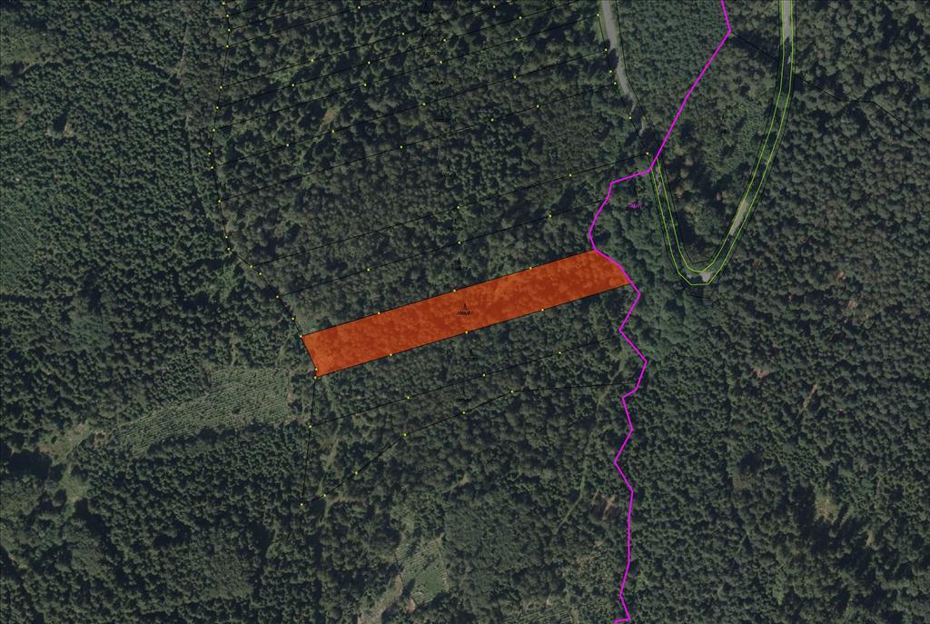 Pozemek-parcela KN 1005/27 o výměře 5653 m2, lesní pozemek